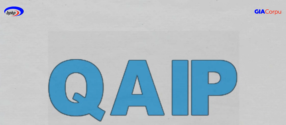 Overview Quality Assurance and Improvement Program (QAIP)